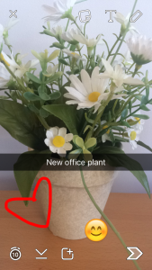 Doodling on new office plant picture on snapchat
