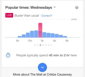 Just in Time for Black Friday – Google gives Shoppers a Real time Forecast on Busy Shops